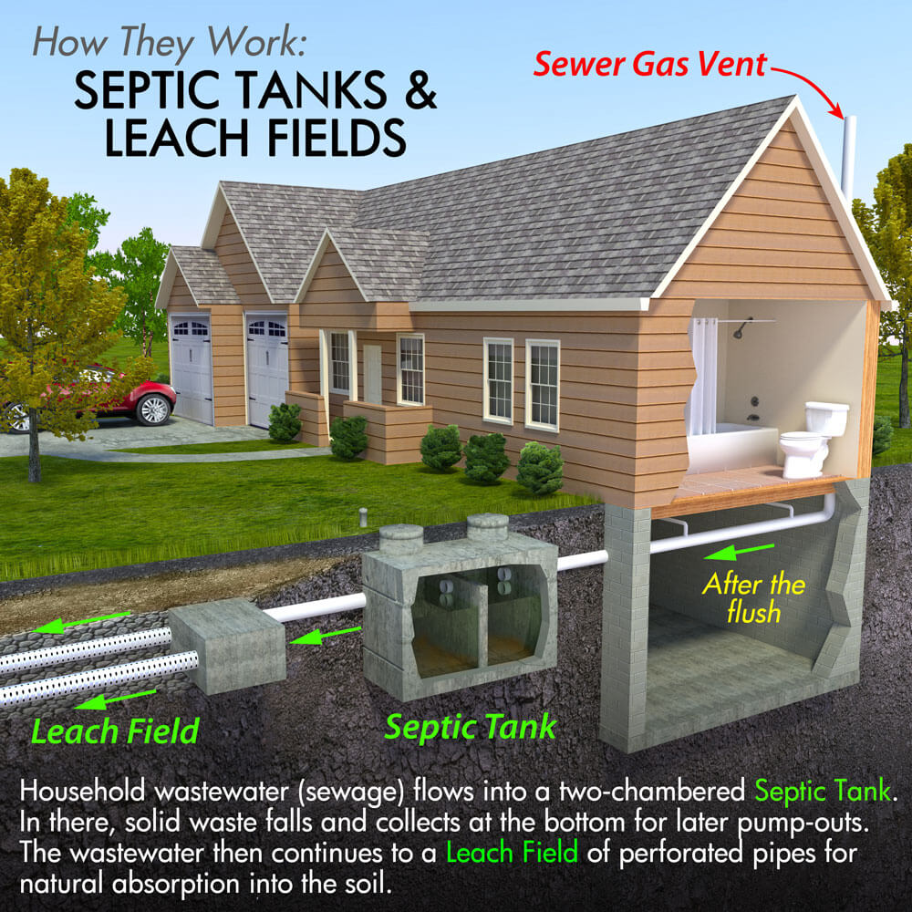 Real Estate Inspections Septic Tank Schematic House System